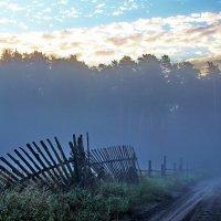 И тает утренний туман... :: Лесо-Вед (Баранов)