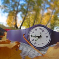 Время идет :: Даша Соломенная