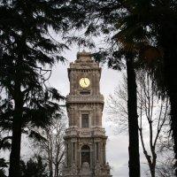 Башня :: Olga