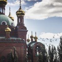 Казахстан, Павлодар. Благовещенский собор :: Евгений Темирбеков