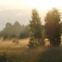 Немного солнца и тумана :: Александр С.