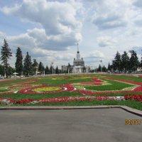 Ковер цветов :: раиса Орловская