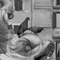 """Из серии """"Римские фонтаны"""" :: Andrey Klink"""