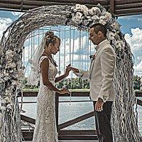 свадьба :: Litana *