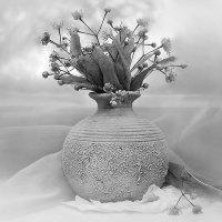 С цветками липы. :: Горбушина Нина