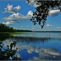 Валдайское озеро :: Дмитрий Анцыферов