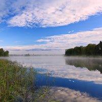 Купание белых облаков... :: Tatiana Markova