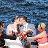 Снимаем свадьбу :: Ольга Иргит