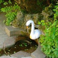 """Фонтанчик """"Лебедь"""". :: Лия ☼"""
