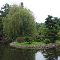 Японский сад :: Ludmil Sams