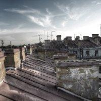 На крыше :: Ed Peterson