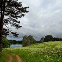 Карельский пейзаж :: Liliya Kharlamova