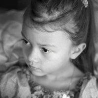 Dashonok :: Olga Moskvitina