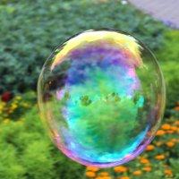 Пузырь :: nezna_komec Жилин