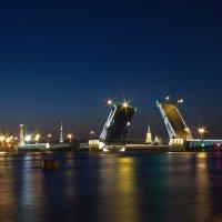 Дворцовый мост :: Оксана Гунина