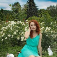 Кролики :: Sandra Snow