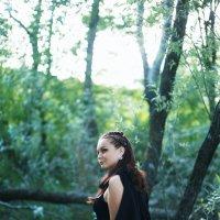 Темный лес :: Анна Войт