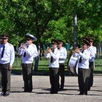 Военный оркестр :: ОЛЬГА КОСТИНА