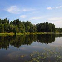Пейзаж :: Андрей Снегерёв