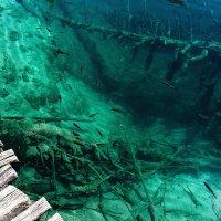 Плитвицкие озера. Хорватия. :: Александр Вивчарик