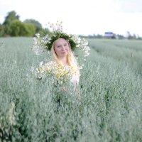 На поле :: Денис Матвеев