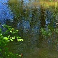 Речка малая течет.... :: Сергей Миклухин