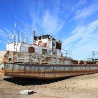 bateau du désert :: Ananasik XI