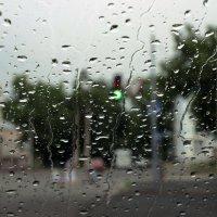 Дождь в дорогу - добрая примета :: Виталий Павлов