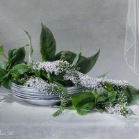 С цветами :: Светлана Л.