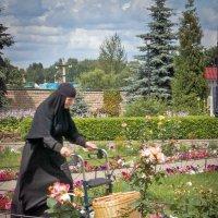 В монастыре. :: Александр Рамус