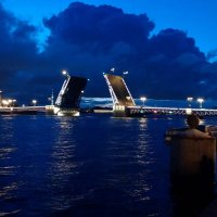 Развод мостов белой ночью :: Самохвалова Зинаида