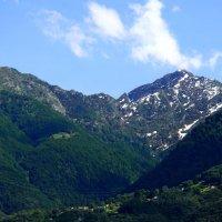 Вершины Альп. Швейцария :: Надежда Гусева