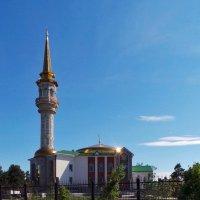 мечеть (г.Сургут) :: Олег Петрушов