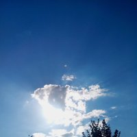 солнышко в облачке :: Светлана Козлова