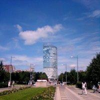Парк 300-ле́тия Санкт-Петербу́рга :: ирина Пронина