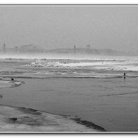 Питерское  туманное... :: tipchik