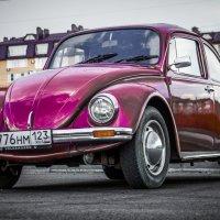 Добрый жук :: Андрей Печерский