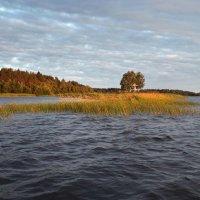 Утро на Ферапонтовом озере :: Валерий Талашов