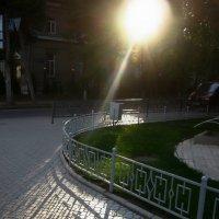 Луч солнца золотого... :: Татьяна Кретова