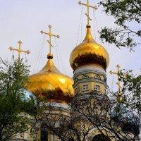 Золотые купола :: Анатолий Зубков