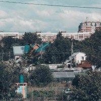 Зелень кругом :: Света Кондрашова