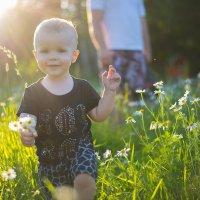 Цветы для мамы :: Анаснасия Щербакова