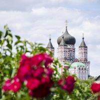 Женский монастырь... :: Алина Кожемяко