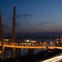 Ночной мост :: Алёна Меженькова