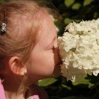 два цветочка :: Марина Калинкина