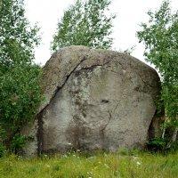 каменный слон в лесу :: Анатолий Смольников