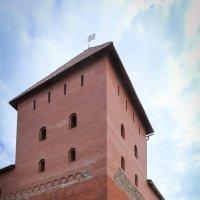 Башня Лидского замка. :: Nonna