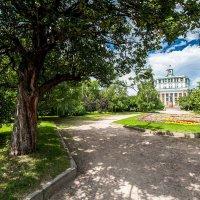 В парке на суворовской :: BluesMaker