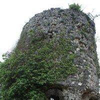 Главная башня второй оборонительной линии. Иверская гора. Анокопия :: Елена Павлова (Смолова)