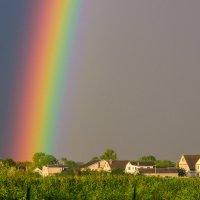 Где рождается радуга :: Veronika Mischenko